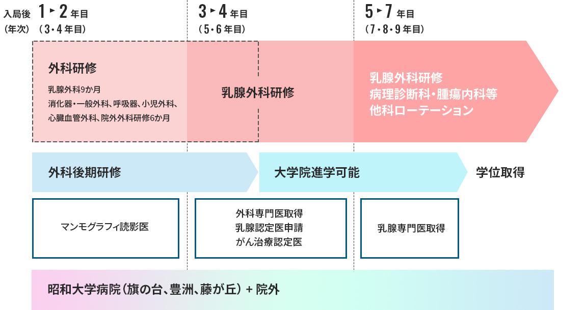 当院での研修(図)